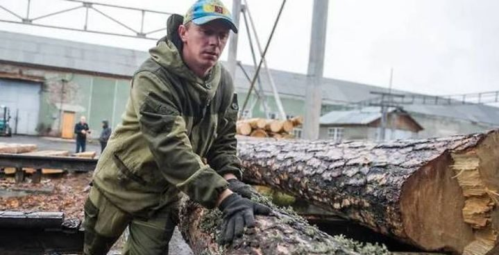 Russia will completely ban the export of logs from January 1 of 2022